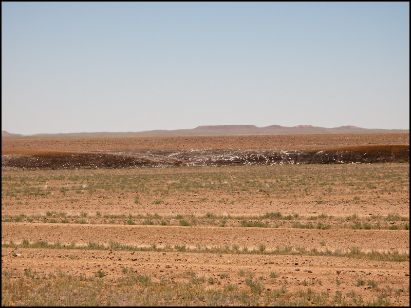 gypsum-fields-on-rolling-gibber-plains