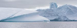 01 julie Stephenson Antarctica