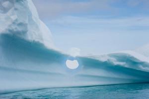 04 julie Stephenson Antarctica