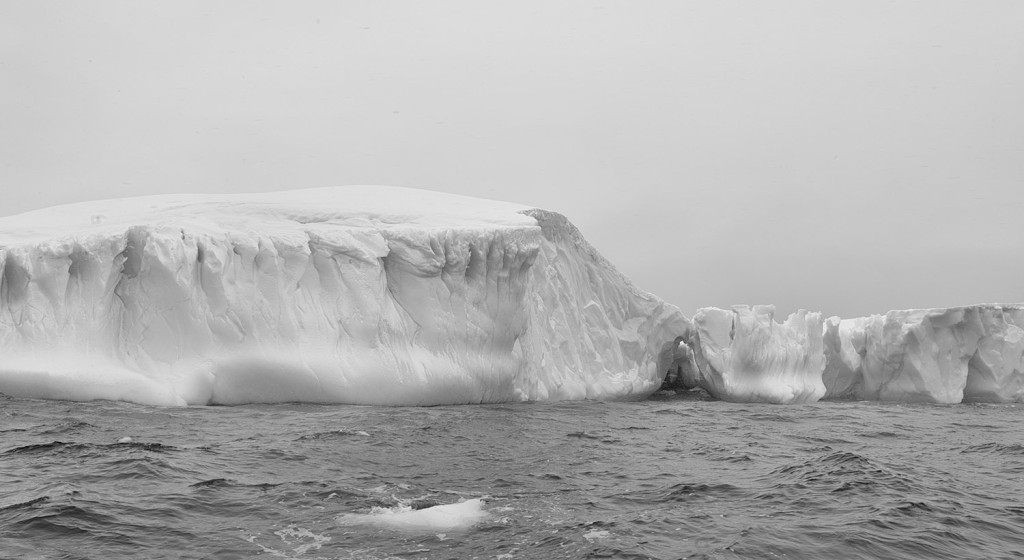 Antarctica New Perspectives 12