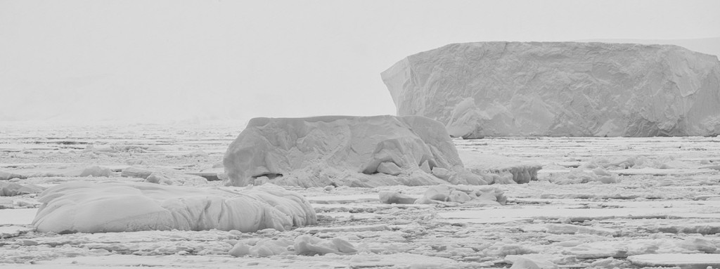 Antarctica New Perspectives 7