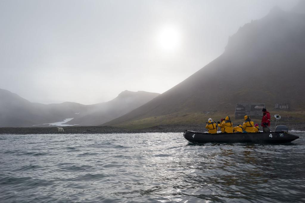 Polar Bear Julie Stephenson Greenland landscape-3