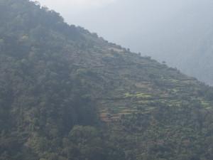 Bhutan-5579