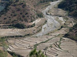 Bhutan-7101