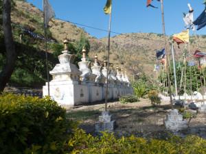 Bhutan-7229