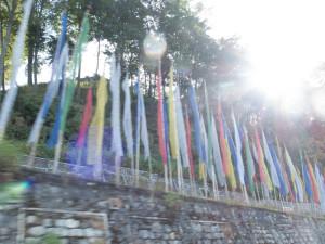 Bhutan-7395