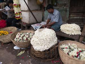 Kolkata Julie Stephenson gallery-26