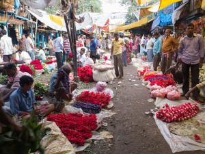 Kolkata Julie Stephenson gallery-39