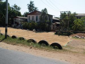 Myanmar Taungoo to Kyaikto-0678
