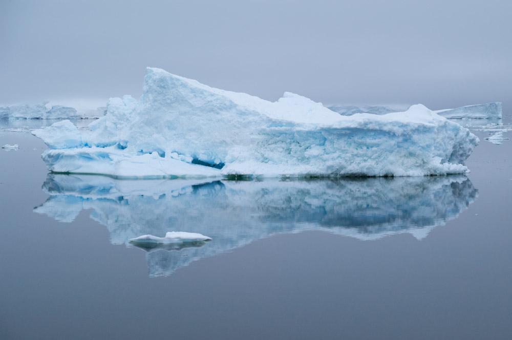JulieStephenson Antarctica-