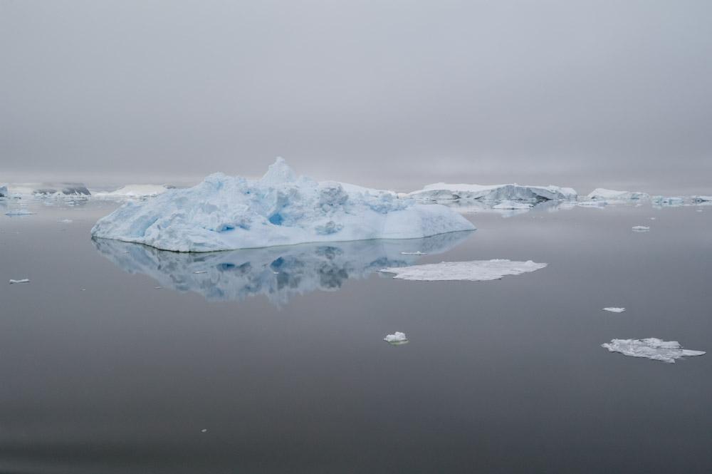 JulieStephenson Antarctica--2