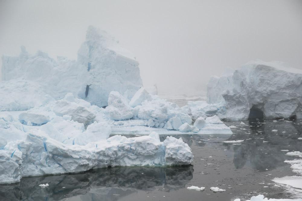 JulieStephenson Antarctica--3