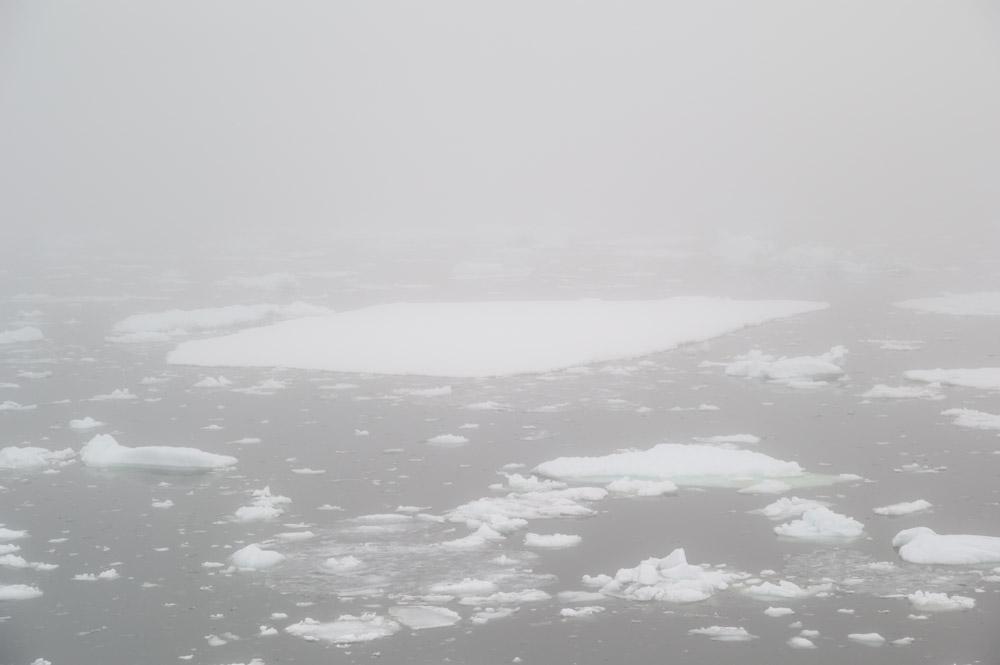 JulieStephenson Antarctica--4