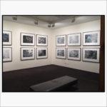 museum of brisbane exhibition
